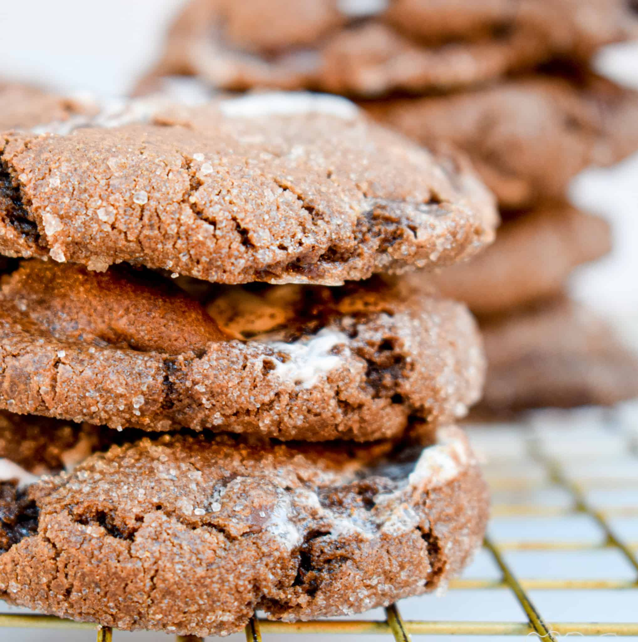 the best chocolate christmas cookie recipe