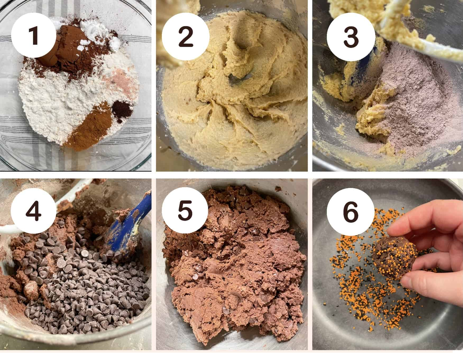 step by step photos for making chocolate halloween cookies