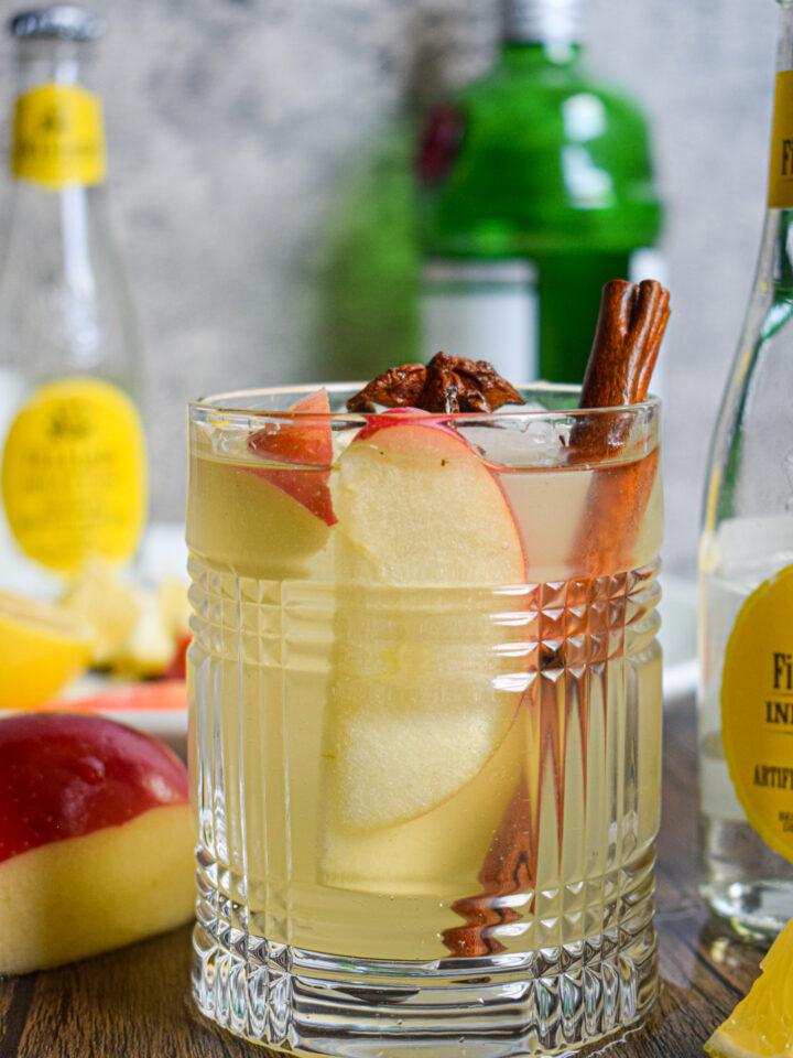 fall gin and tonic